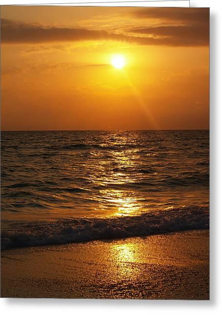 Sarasota Sunset Florida Greeting Card by Athala Carole Bruckner