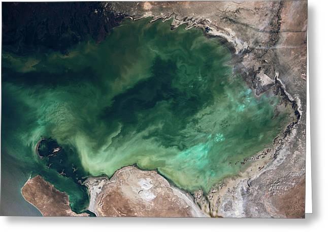 Satellite View Of Caspian Sea Greeting Card