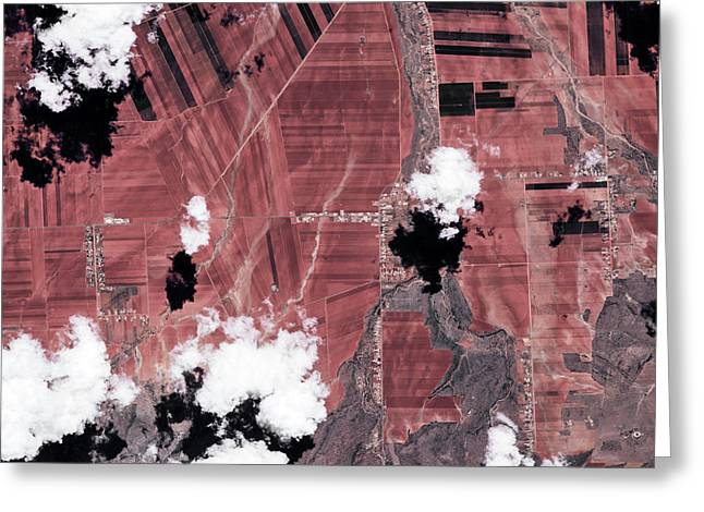 Satellite View Of Fields, Chihuahua Greeting Card
