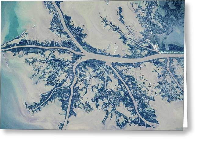 Satellite View Of Mississippi River Greeting Card