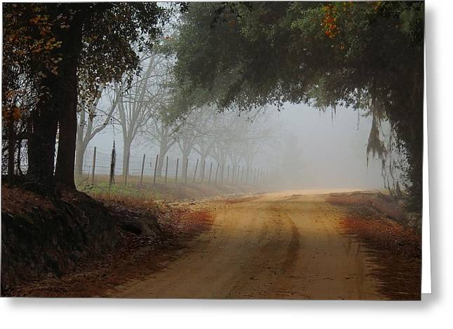 Satilla River Road Greeting Card