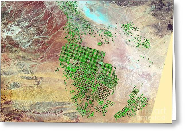 Saudi Arabia Agriculture, 2012 Greeting Card by Nasa
