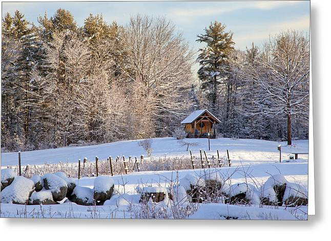Greeting Card featuring the photograph Sauna Shed by Larry Landolfi