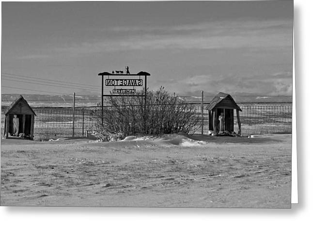 Greeting Card featuring the photograph Savageton Cemetery  Wyoming by Cathy Anderson