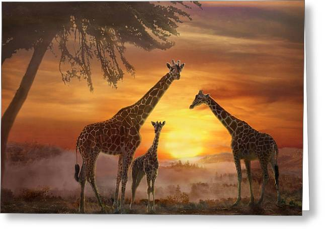 Savanna Sunset Greeting Card