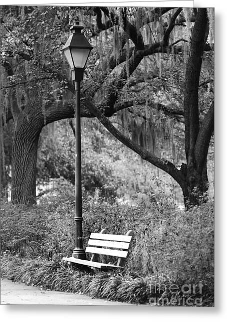 Savannah Afternoon - Black And White 2x3 Greeting Card by Carol Groenen