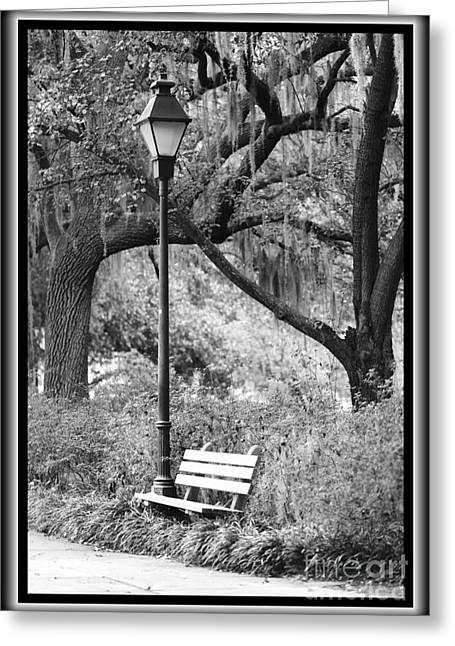 Savannah Afternoon - Black And White Greeting Card by Carol Groenen