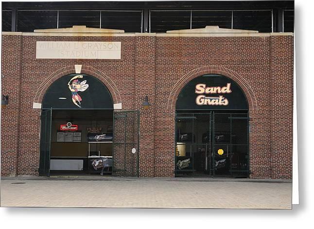 Savannah Sand Gnats At Grayson Stadium Greeting Card