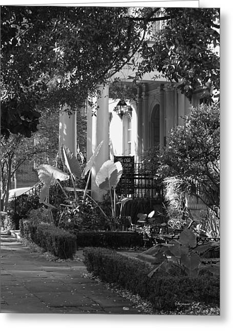 Savannah Scenic In Black And White Greeting Card