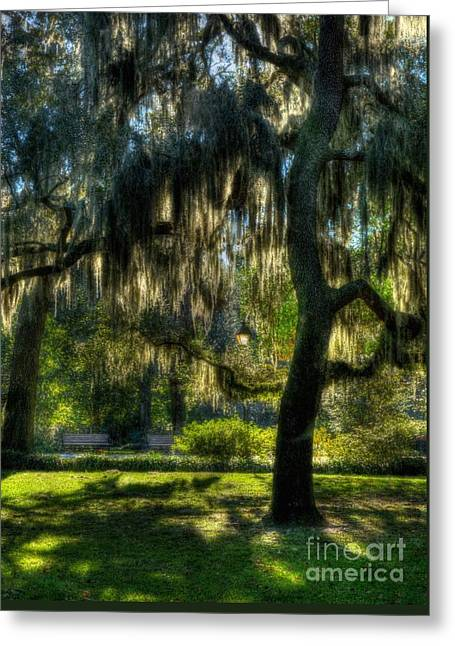 Savannah Sunshine Greeting Card