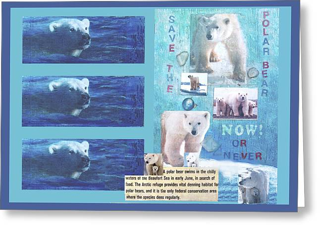 Save The Polar Bear Now Or Never Greeting Card