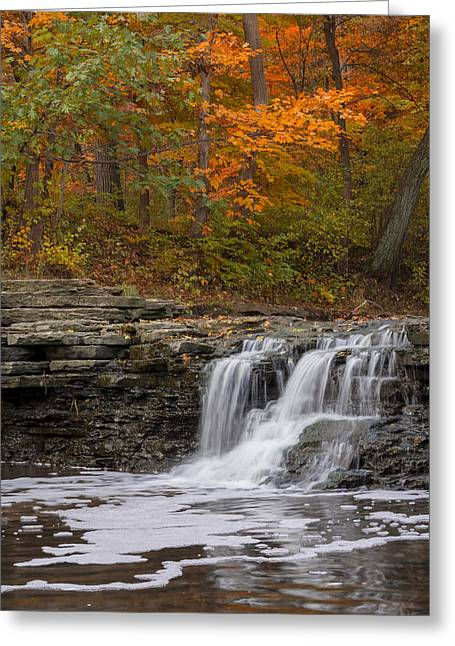 Sawmill Creek 2 Greeting Card