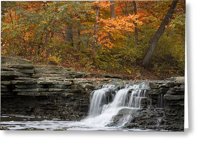 Sawmill Creek Greeting Card