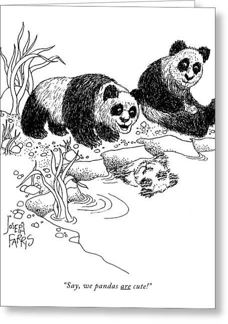 Say, We Pandas Are Cute! Greeting Card