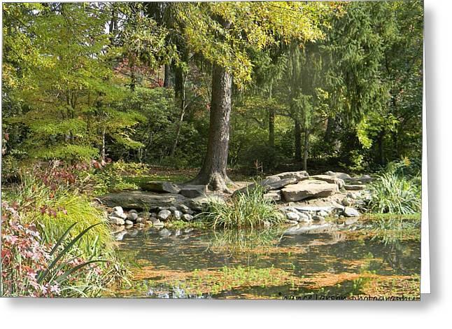 Sayen Gardens Pond Greeting Card