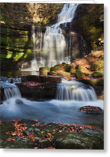 Scalber Force Greeting Card