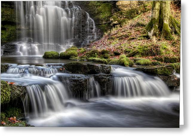 Scaleber Force Falls Greeting Card by Chris Frost