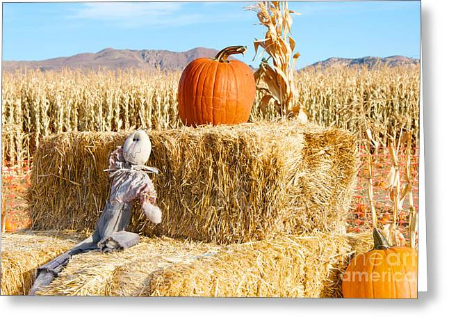 Greeting Card featuring the photograph Scarecrow Breaktime by Vinnie Oakes