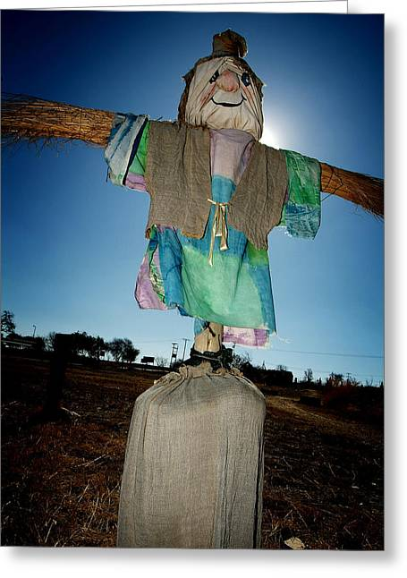 Scarecrow In Filed Greeting Card
