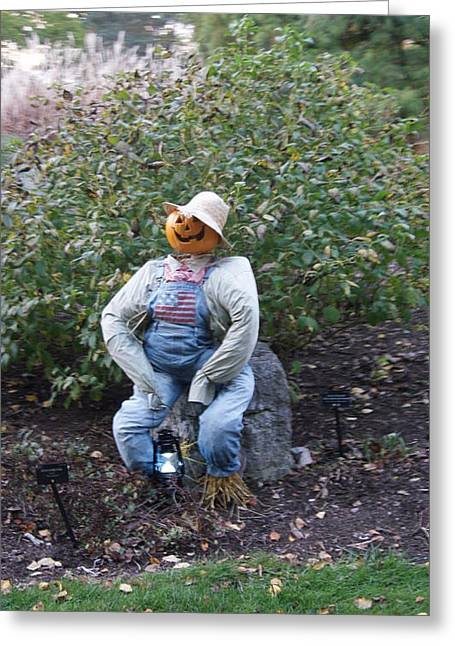 Scarecrow Sitting Greeting Card