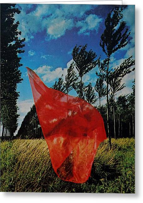 Scarf In The Winds Greeting Card
