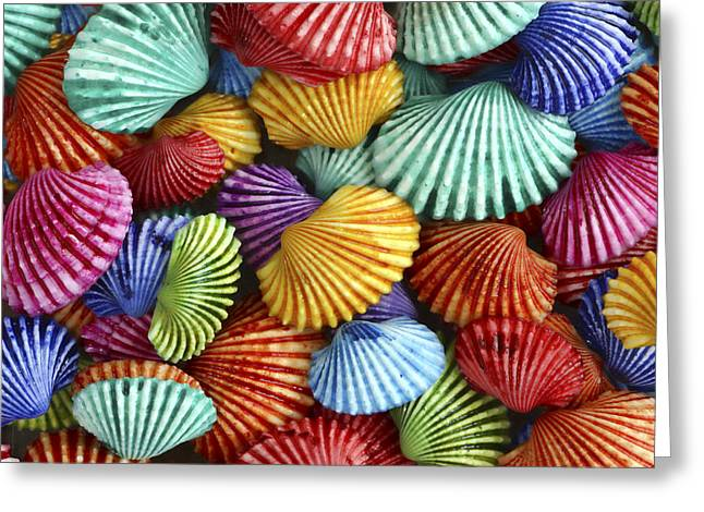 Scattered Colors Greeting Card by Carol Leigh