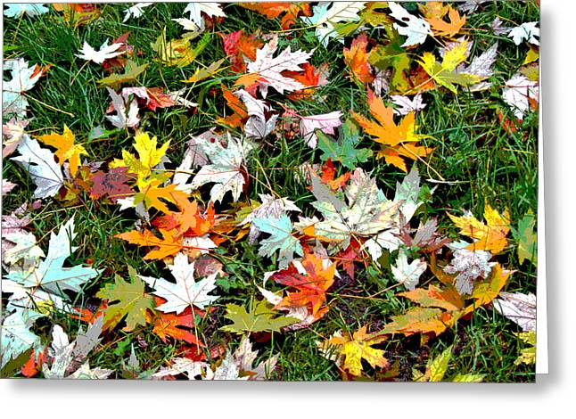 Scattered Leaves Greeting Card by Mariola Szeliga