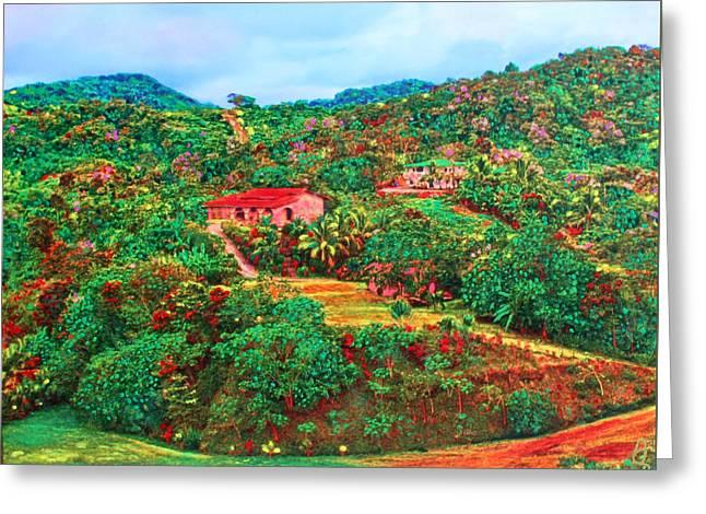Scene From Mahogony Bay Honduras Greeting Card by Deborah Boyd
