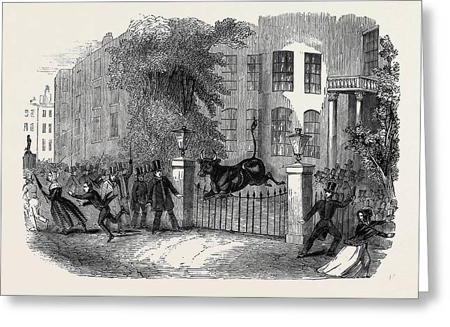 Scene In Privy Gardens, Whitehall Greeting Card