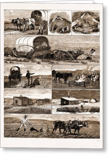 Scenes From An Emigrants Life In Manitoba Greeting Card