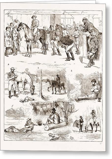 Scenes Of Australian Life, 1876 1. Horse Sale Greeting Card