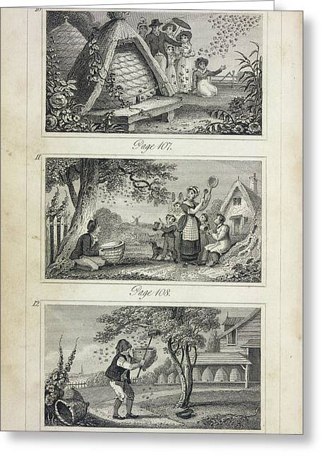 Scenes Of Industry Displayed In The Bee-h Greeting Card by British Library