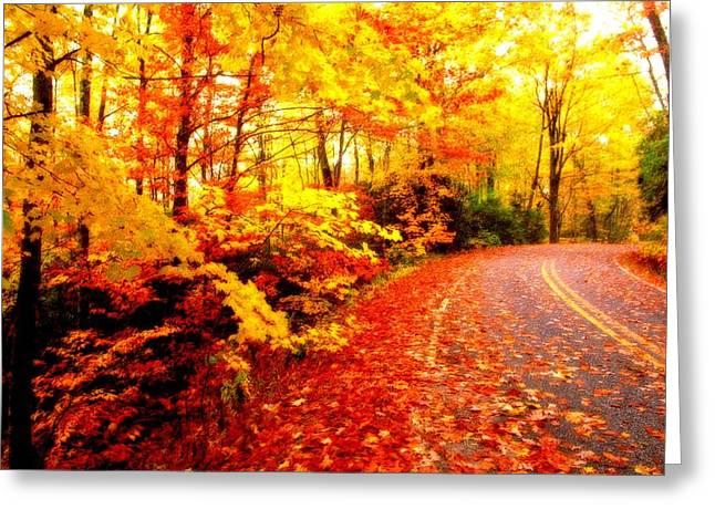 Scenic Autumn Drive Greeting Card