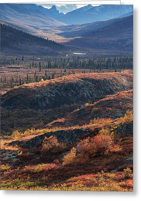 Scenic Autumn View Of Mountains Greeting Card