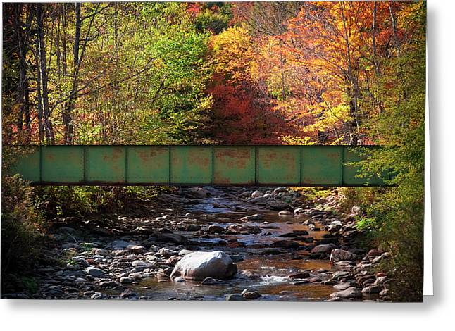 Scenic Bridge Over White River Greeting Card by Jenna Szerlag