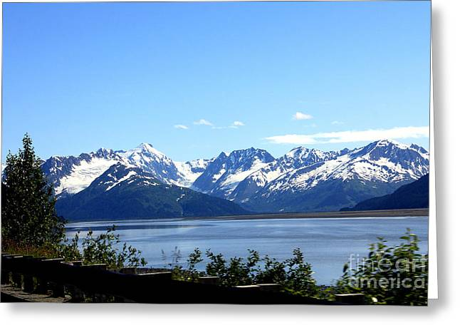Greeting Card featuring the photograph Scenic Byway In Alaska by Kathy  White