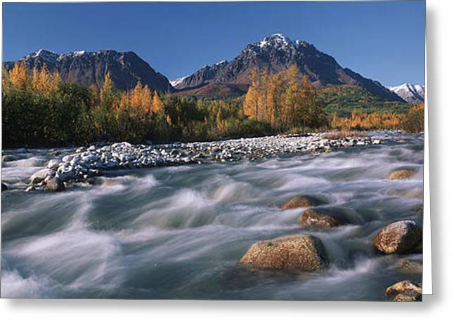 Scenic Of Granite Creek In Autumn Sc Greeting Card by Calvin Hall