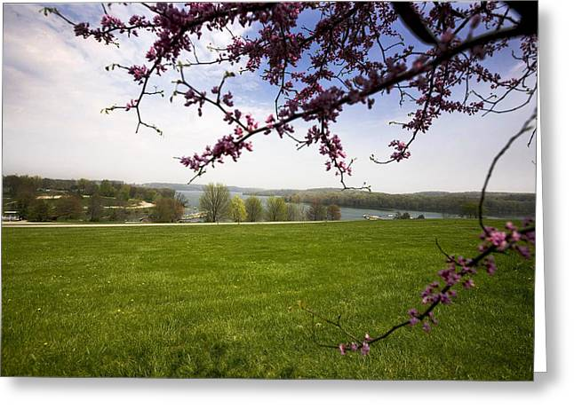 Scenic Park Greeting Card by John Holloway