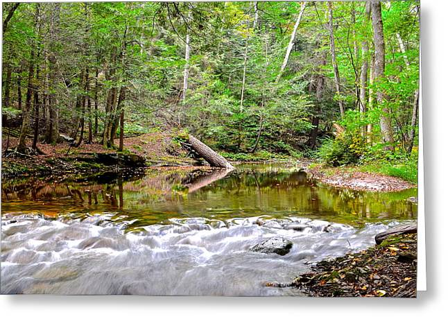 Scenic Seclusion Greeting Card by Frozen in Time Fine Art Photography