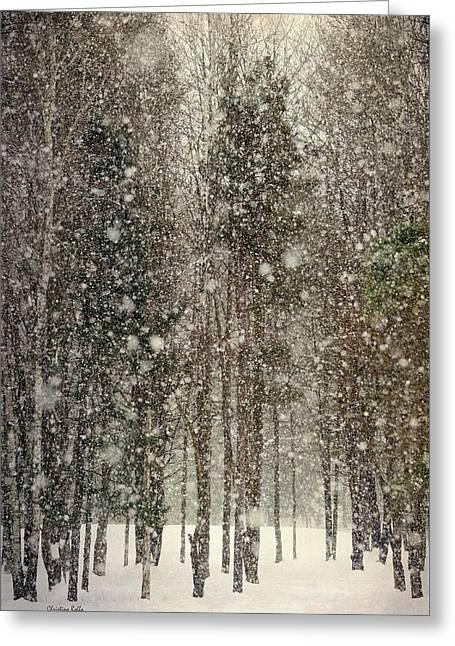 Scenic Snowfall Greeting Card