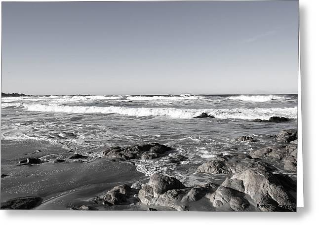 Scenic View Along 17 Mile Drive Duotone Greeting Card