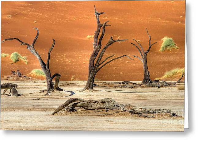 Scenic View At Sossusvlei Greeting Card by Juergen Klust