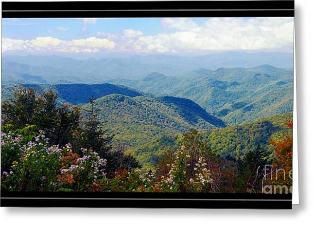 Scenic View Greeting Card by Kathleen Struckle