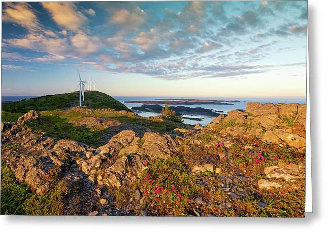 Scenic View Of Kodiak Island Greeting Card by Marion Owen