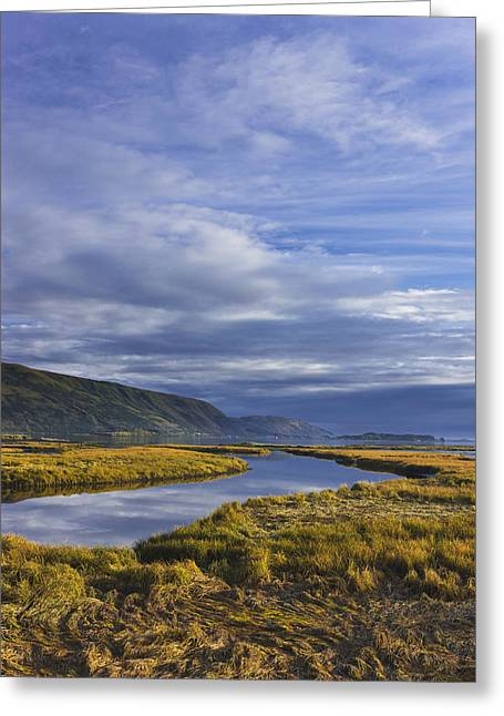 Scenic View Of Tidal Slough Along Greeting Card by Kevin Smith