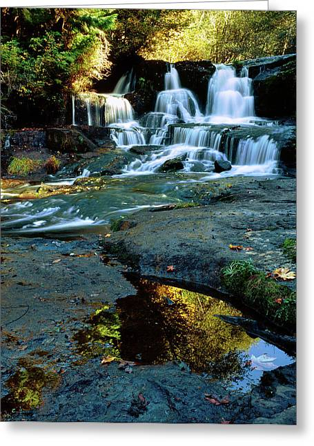 Scenic View Of Waterfall, Alsea Falls Greeting Card