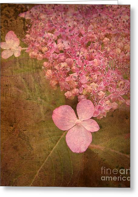 Scent Of Hydrangea Greeting Card