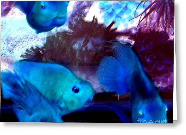 School Of Blue Fish Abstract Greeting Card by Gail Matthews