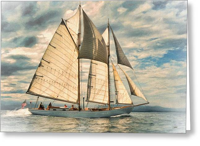 Schooner 101a Greeting Card