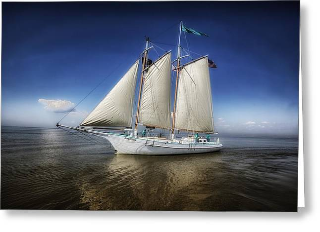 Schooner On Mobile Bay Greeting Card by Mountain Dreams
